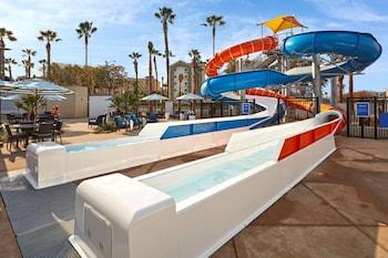 Picture of Cambria Hotel Anaheim Resort Area in Anaheim