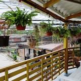 Family Room with Shared Bathroom - Balcony