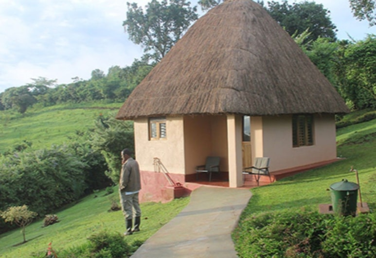 Chimpanzee Forest Guest House, Kibale