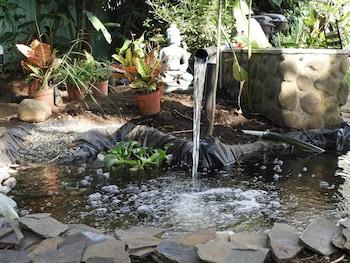 תמונה של Casa Jardin Del Mango בסן חוזה