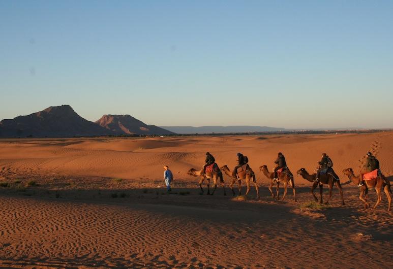 Zagora Desert Camp, Errouha, Children's Activities
