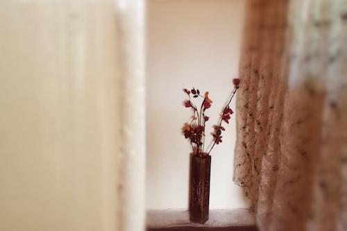 伊本卡尔顿公寓酒店/