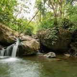 Природний басейн