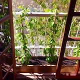 Habitación doble superior, vista al jardín - Vista al jardín