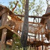 Appartement, Meerdere bedden (Whispering Pines 634) - Terrein van accommodatie