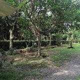 Courtyard View