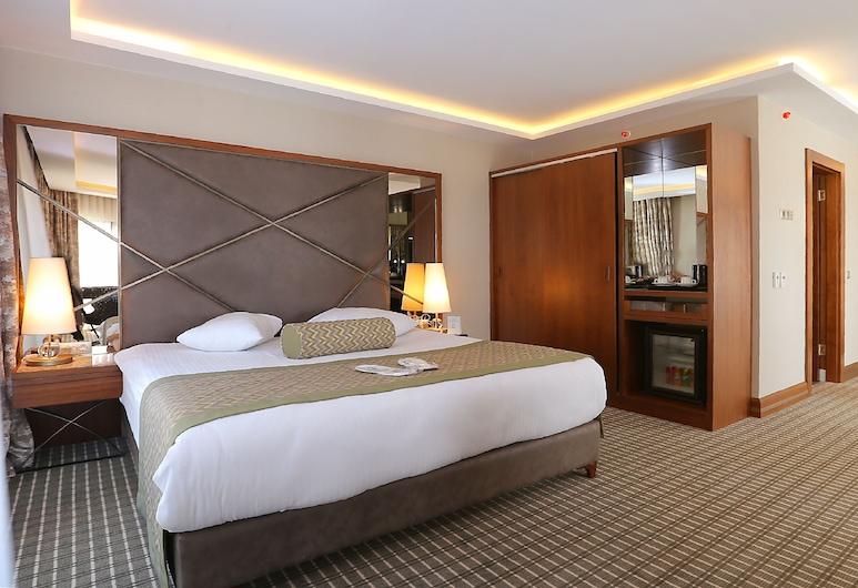 Q 酒店, 安卡拉, 豪華套房, 客房