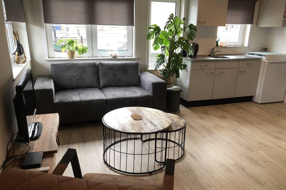 ดีลักซ์อพาร์ทเมนท์ - พื้นที่นั่งเล่น