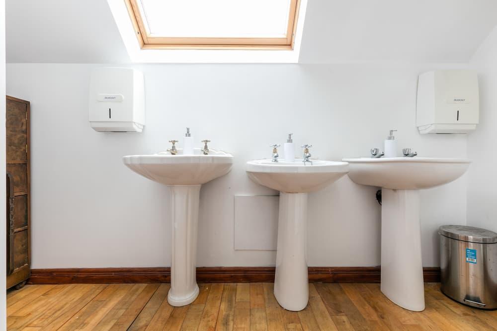 공용 도미토리, 남녀공용 도미토리, 산 전망 - 욕실