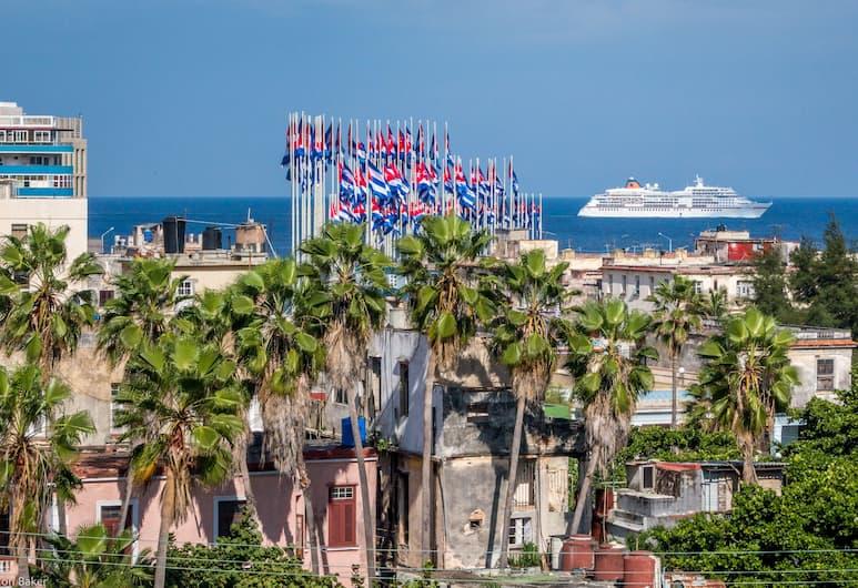 Doña Clara, Havana
