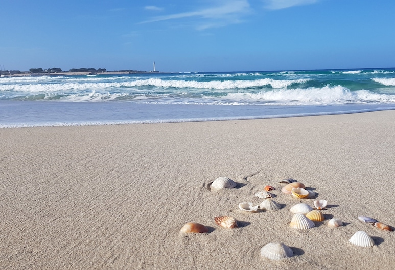 Mariposa Bed And Breakfast, San Vito Lo Capo, Beach
