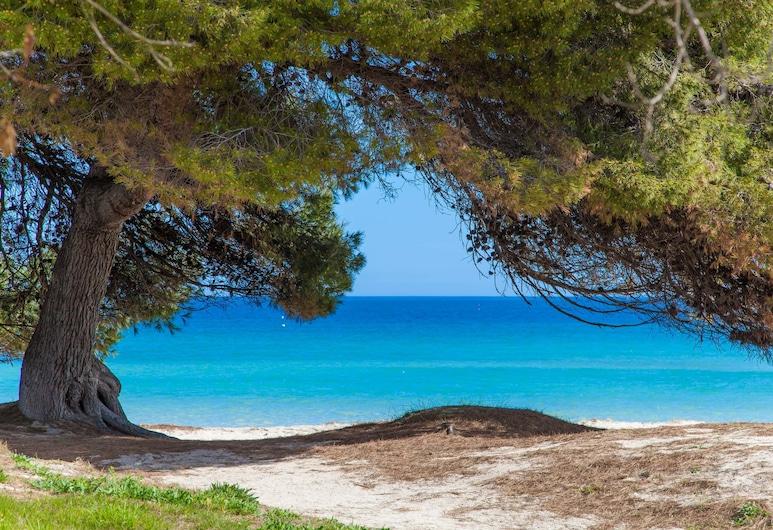 صن أوف ذا باي 1 (فيدالبا بي 3 - إيه 1), Alcudia, الشاطئ