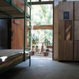 Shared Dormitory, Shared Bathroom 8 Beds  - Hotel Interior