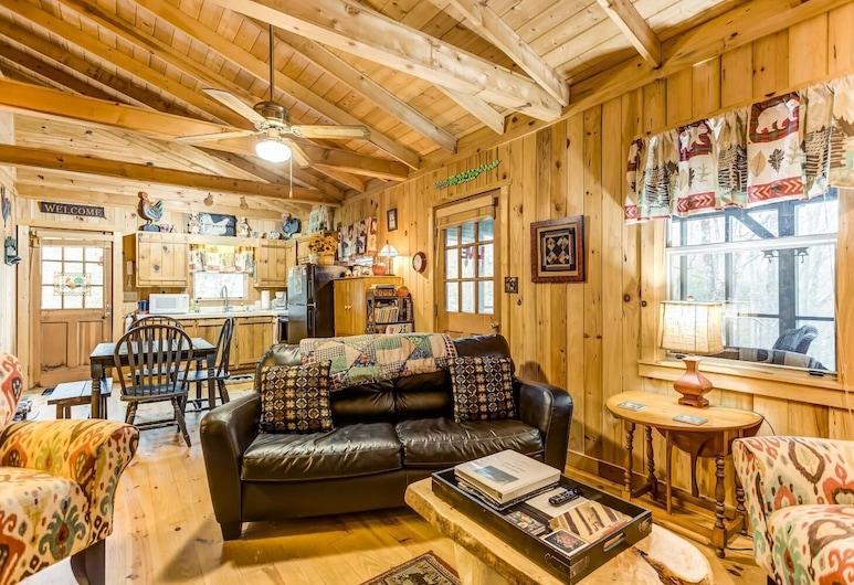 Alone At Last, Blue Ridge, Living Room