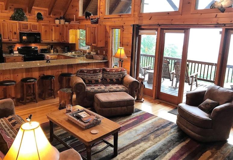 Light`s Mountain Lake Overlook, Blue Ridge, Living Area
