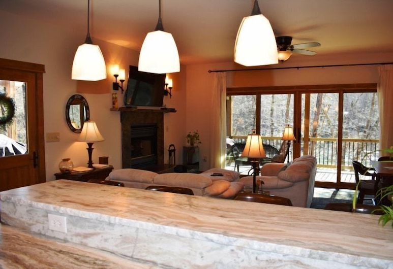 Wildwood River Retreat, Mineral Bluff, Living Area