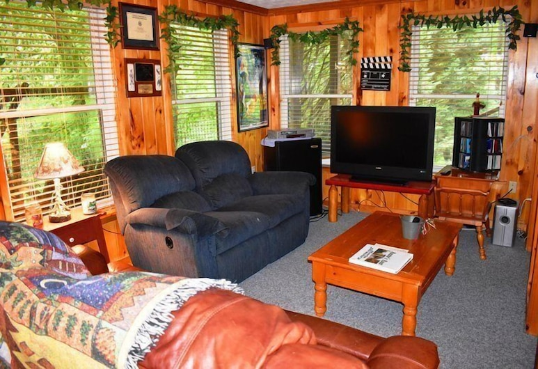 Roosters Roost, Blue Ridge, Living Area