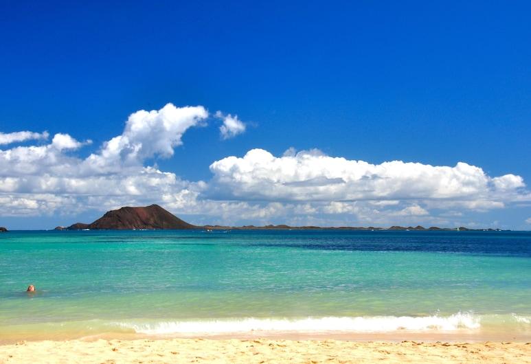 GBH Volcanic Beach, La Oliva, Pantai