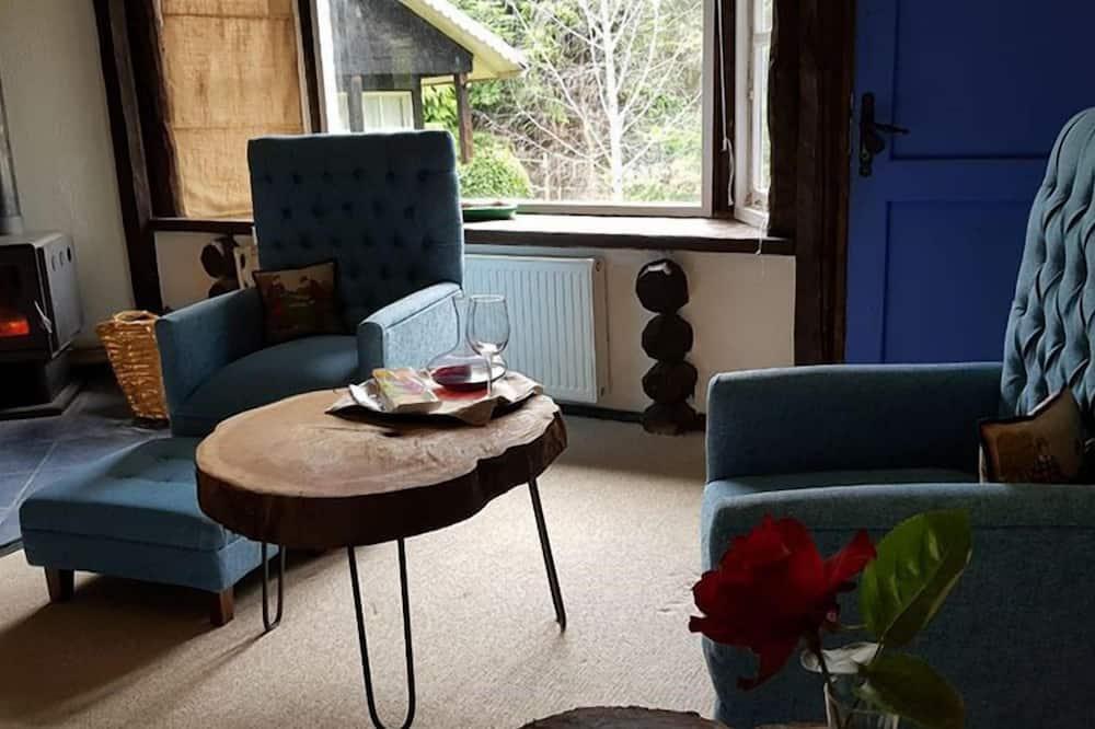 Полулюкс - Зона гостиной