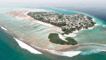 صورة كيلا إن في جزيرة ثيلسدو