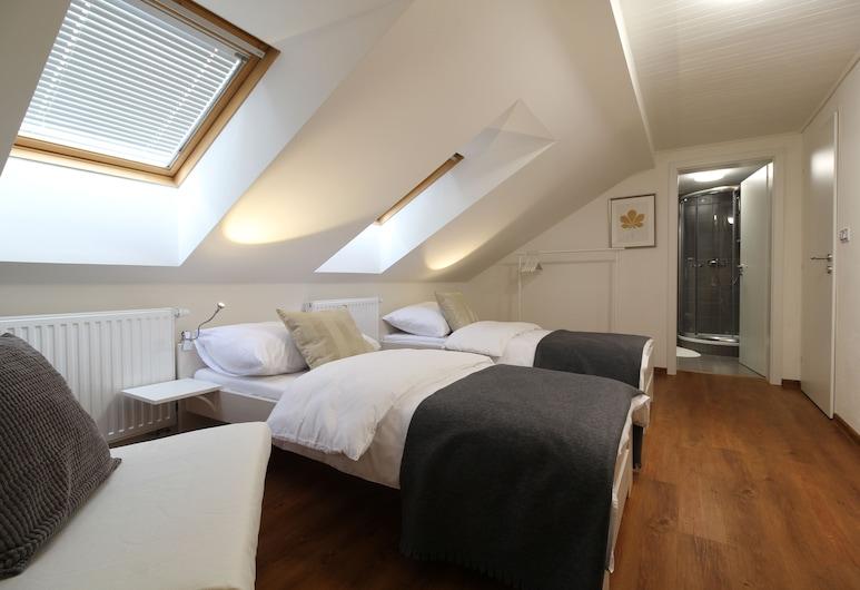 Villa Gap apartments, Cesky Krumlov, Double or Twin Room (4), Bilik