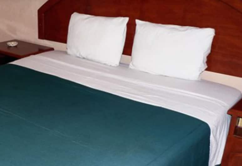 Hotel Estacion, Guadalajara, Standard Tek Büyük Yataklı Oda, 1 Çift Kişilik Yatak, Oda