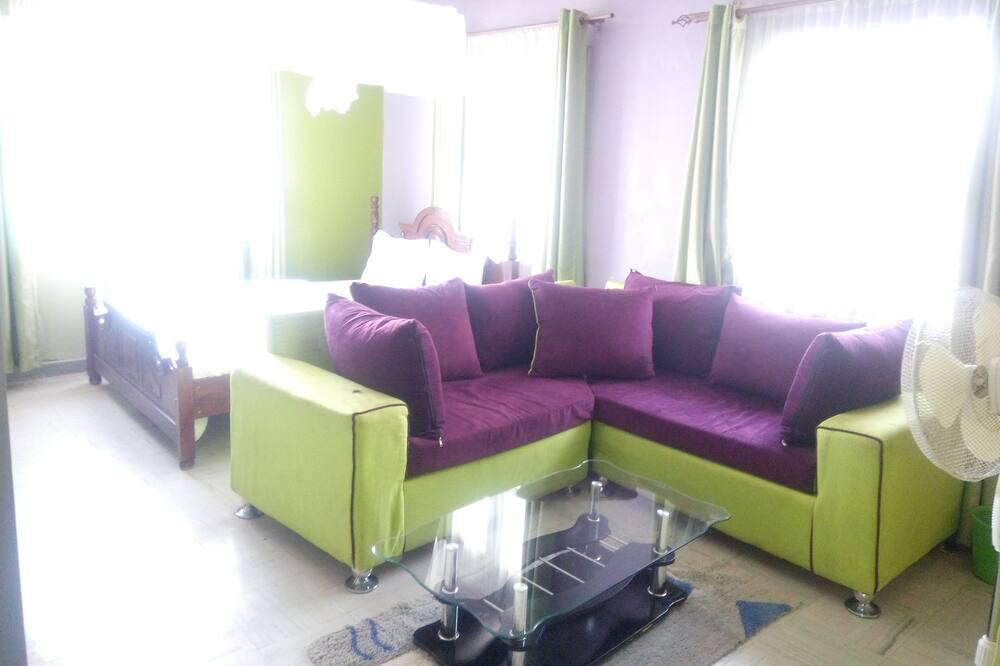 Comfort Studio Suite (101) - Living Area