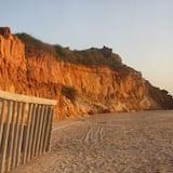 Superior Studio, 1 Queen Bed - Beach/Ocean View