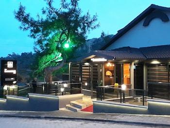 Introduce sus fechas y vea precios de hoteles última hora en Ortaca