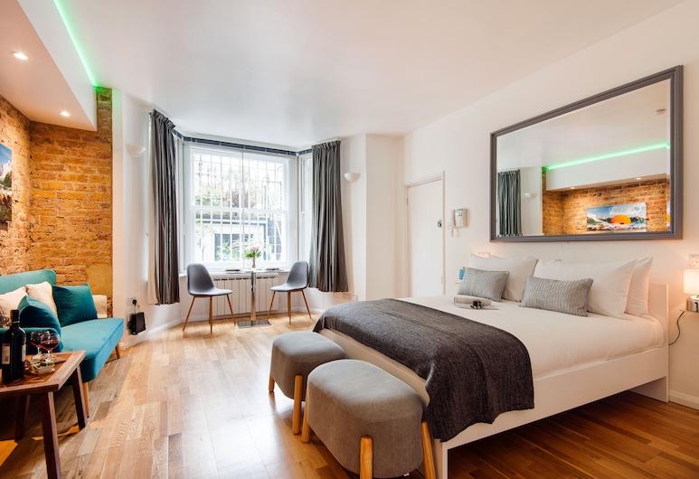 The Lovely Longridge Road Apartment - ESI, Lontoo, City-huoneisto (1 Bedroom), Huone