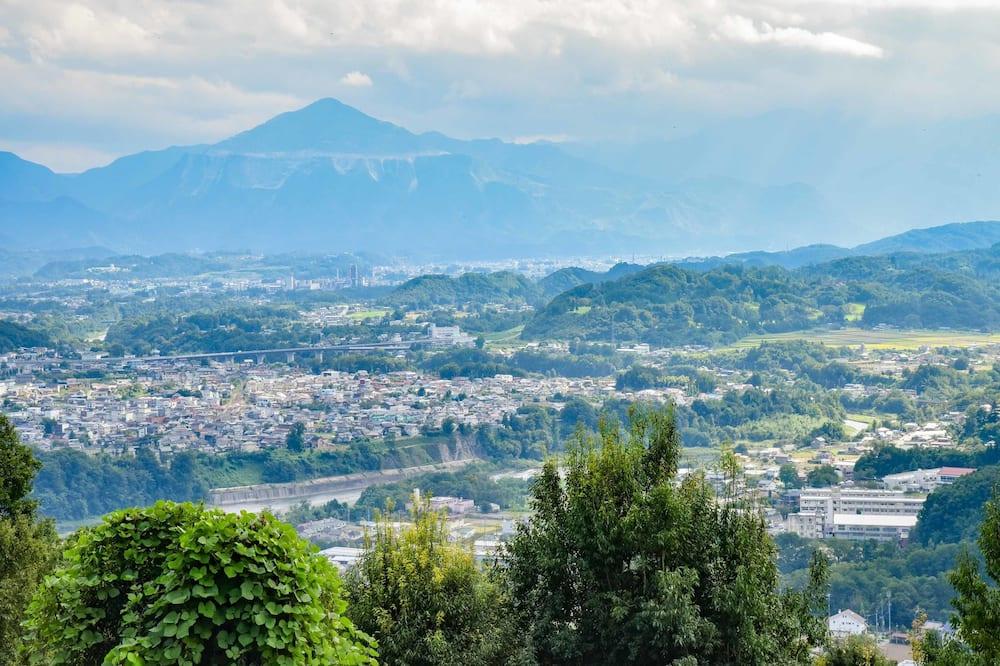 Cottage Ekonomi (2 People) - Pemandangan Pegunungan