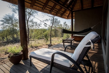 Picture of Little Garonga in Kruger National Park