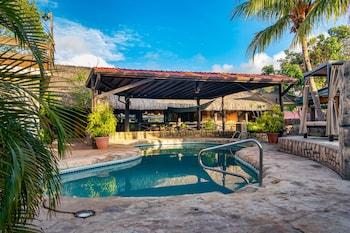Willemstad bölgesindeki Amazonia - The Jungle Experience Resort resmi