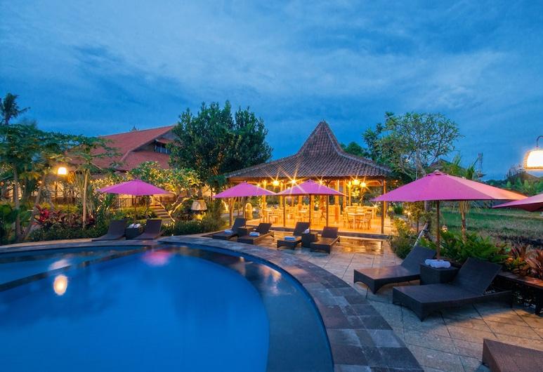 Uma Dawa Resort and Spa, Ubud, Basen odkryty