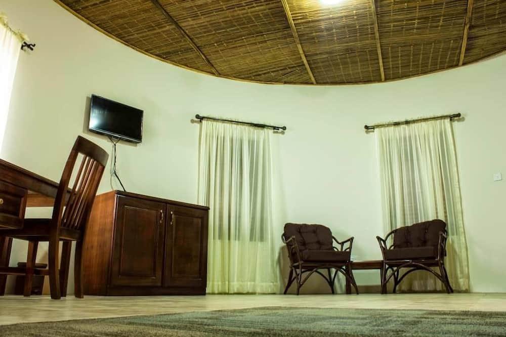 Dvivietis kambarys, 1 standartinė dvigulė lova - Televizija