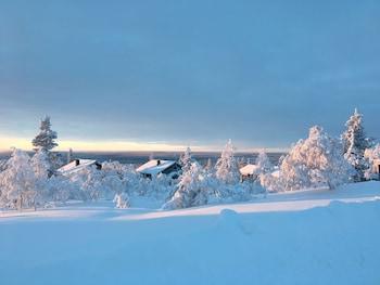 Bild vom Villas Karhunpesä in Saariselkä