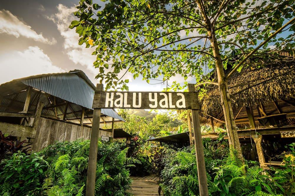 Selina Kalu Yala