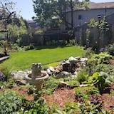 客房, 1 張加大雙人床, 花園景 - 園景