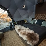 Deluxe Dome - Living Area