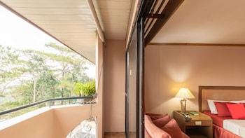 Baguio bölgesindeki South Drive Baguio Manor resmi