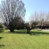 Pokoj Basic s dvojlůžkem - Výhled do zahrady