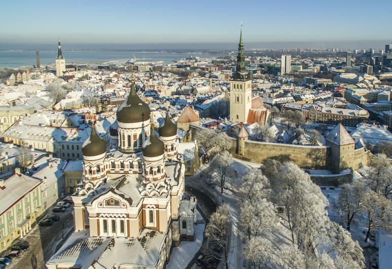Tribe Theory - Entrepreneurs Hostel, Tallinn, Esterni