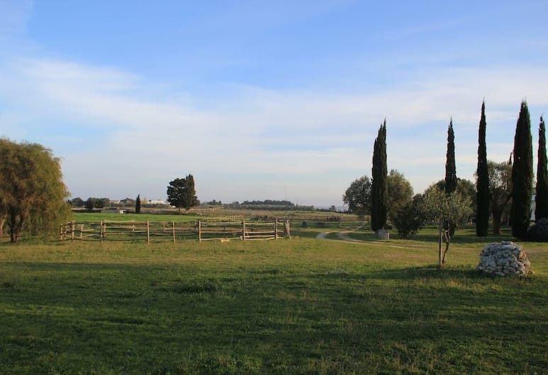 Podere San Martino, Otranto, Property Grounds