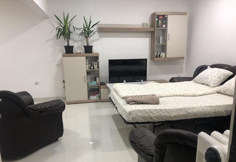 Apartment on the river side, Pancevo, Appartement Confort, plusieurs lits, Coin séjour