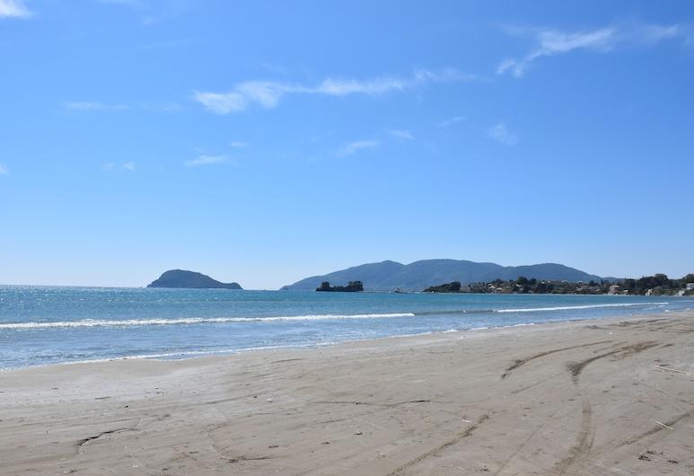 Delfini Gold, Ζάκυνθος, Παραλία