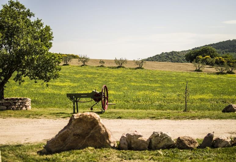 Agriturismo La Collina, Massa Martana, Property Grounds