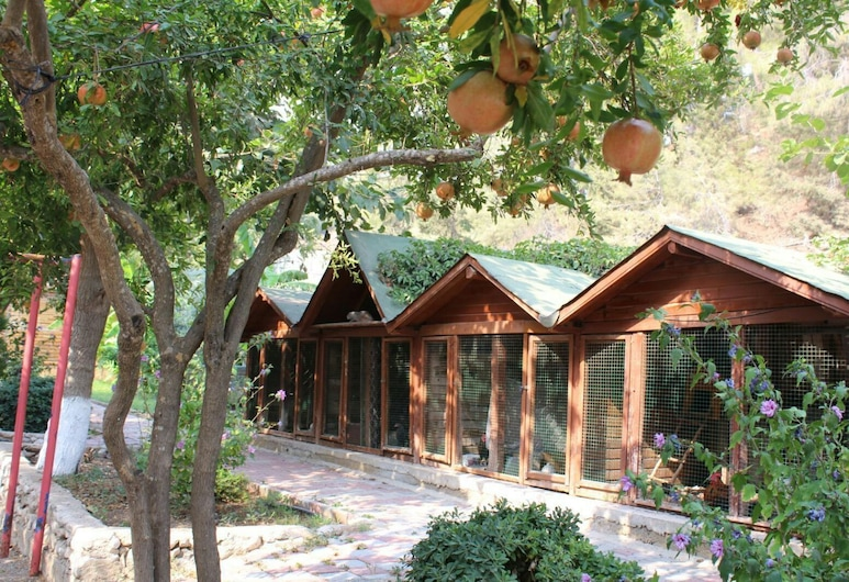 Oranj Ranch Hotel, Kemer, Exteriér