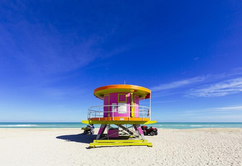 Cardozo Hotel South Beach, Miami Beach, Strand