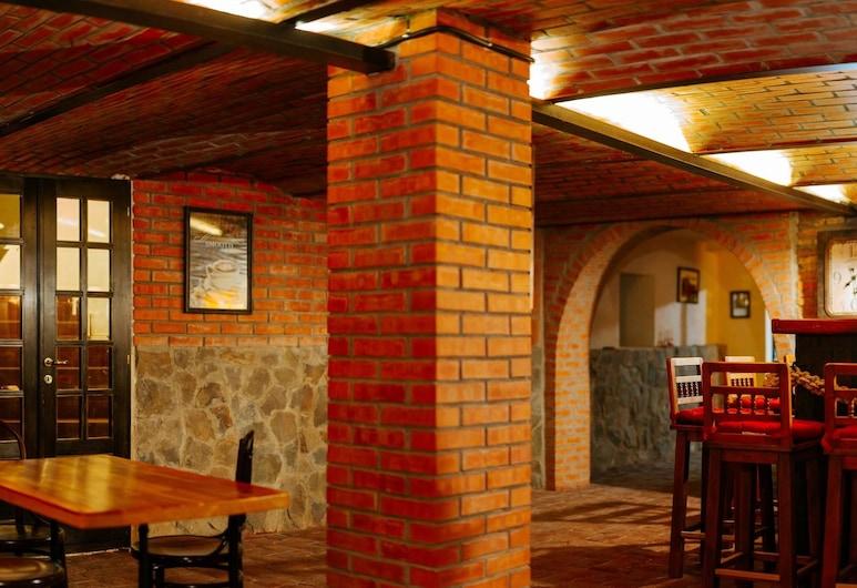 Mansion Nagy, Sfantu Gheorghe (Transylvania), Hotellin baari