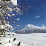 Zimné športy a lyžovanie